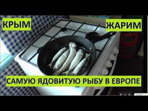 Крым. Едим самую ядовитую рыбу в Европе. Дракон.