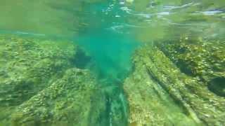 подводный мир Паттайя Тайланд(, 2015-01-05T16:30:22.000Z)