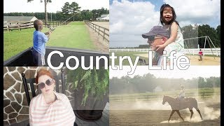 should we move   life in the country