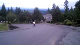 The Adventures Of Preston The Poodle-retriever 2