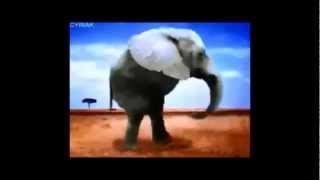 Tonton MesCouilles - Super Zoo Porn