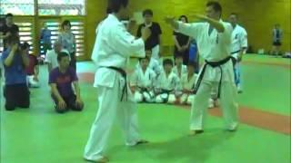 20140531 格闘技交流セミナー 太氣拳・前蹴の受け(太氣拳尚武館)Taikiken Defence for Mae-Geri