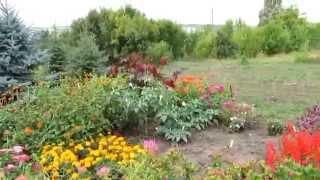 Ботанический сад Саратова  Экскурсия(экскурсии., 2014-09-14T13:23:38.000Z)