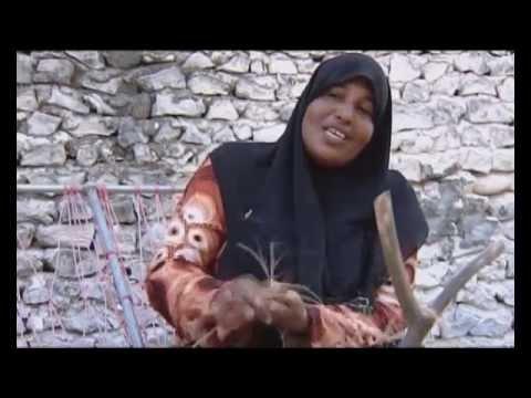 Sia (Documentary on Maldivian Art) Episode 02 - Part 01 (2009)