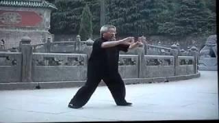 TAI CHI CHUAN - Yang style ( par Sifu Peter Tam Hoy )