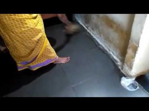 housekeeping |Short Film 2016 | Yes Foundation |