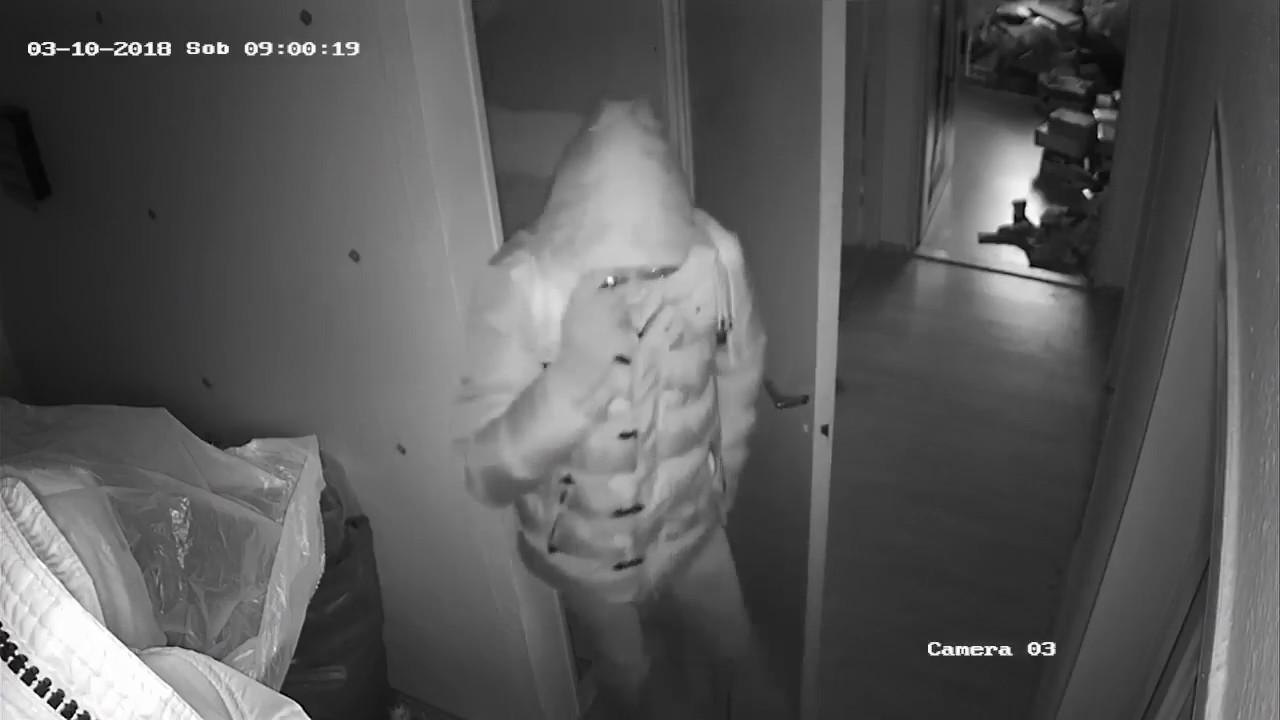 VIDEO: Mue v Dub srazilo auto. Z okliv vypadajc srky