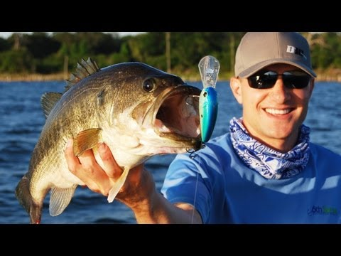 Power Fishing Tips - Buzzbait Crankbait and Spinnerbait Bass Fishing Tips