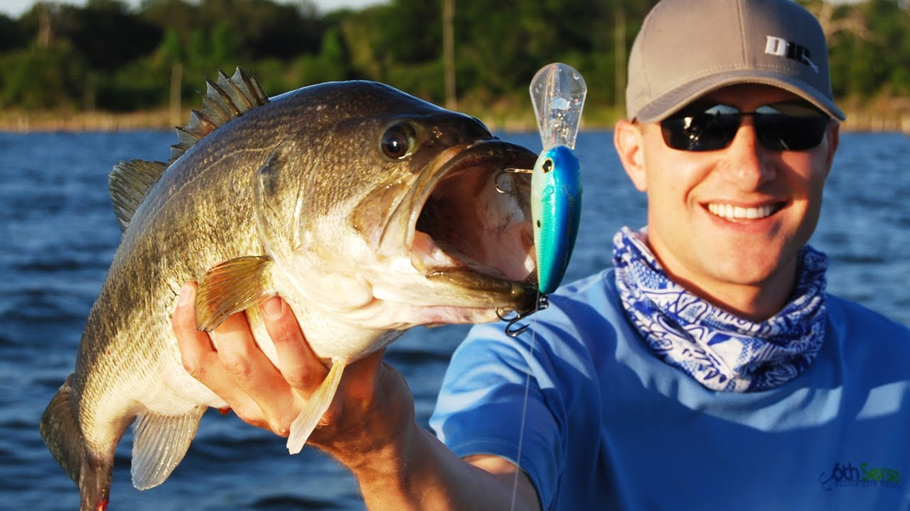 Power fishing tips buzzbait crankbait and spinnerbait for Spinnerbait bass fishing