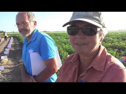 B.C. Potato Industry Variety Trial Day