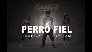 Perro Fiel - Shakira I Coreografía Zumba Zin I So Dance