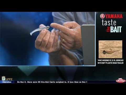 Taste the Bait: Damiki rig