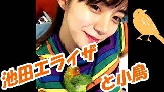 女優・モデルの池田エライザさんの動画です.