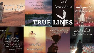 2 Lines quotes about life | True lines islamic Whatsapp dp | Islamic status