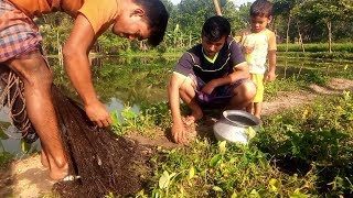 Best Net Fishing In Pond With Beautiful Nature। Real Fishing In Village