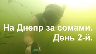 Подводная охота на Днепре - За сомами. - День 2-й.(Открытие сезона после нерестового заперта на Днепре.3 дня жизни на острове подводных охотников и рыбаков.За..., 2015-06-26T16:00:56.000Z)