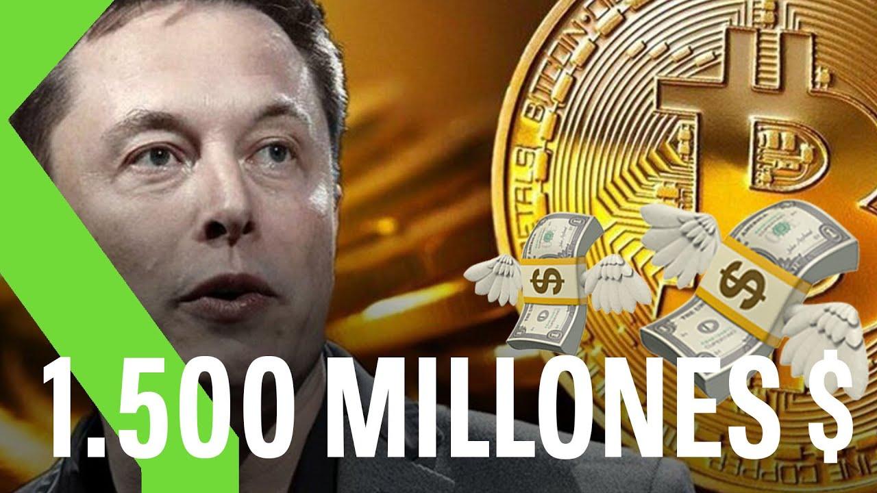 lascesa e la caduta del bitcoin