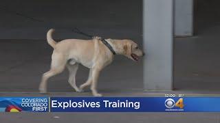 K-9 Officers Get Explosives Training