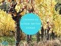 L'automne sur la Route des Vins d'Alsace