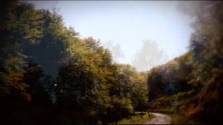Marie-Nicole Lemieux: Wesendonck Lieder 3 (Im Treibhaus) by Wagner