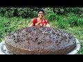 Grandma's Special Delicious Chocolate Cake Recipe  Christmas Chocolate Cake #grandmafoodnetwork