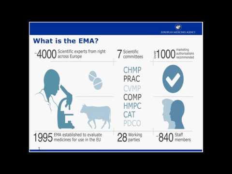 EMA Perspectives/Clinical Trials and Frailty