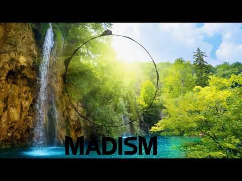 Vicetone - Siren Ft. Pia Toscano (Madism Remix)