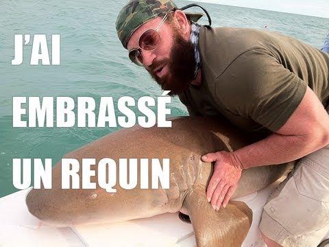 Vidéo J'ai embrassé un requin !