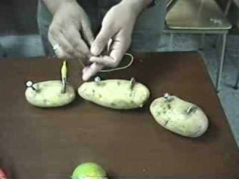 Bater a de frutas y verduras youtube - Hacer menestra de verduras ...