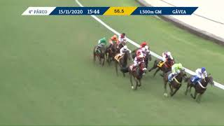 Vidéo de la course PMU CLASSICO OCTAVIO DUPONT