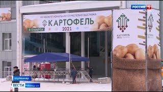 Паян Шупашкарта регионсен 13-мӗш ҫӗр улми куравӗ уҫӑлать
