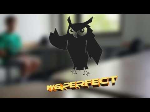 Trickshots im Unterricht | WG Perfect