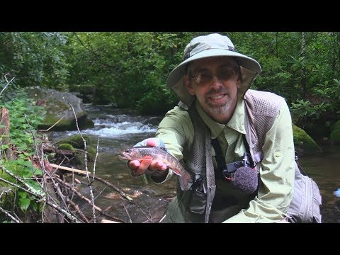 DVD: Trout Streams Of North Carolina, West