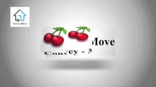 Convey Move
