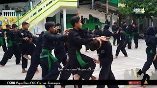 Latihan Pencak Silat Pagar Nusa ! Teknik Beladiri Praktis