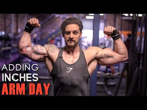 ARM DAY | ADDING INCHES | Full Workout | New Exercises You NEED To Try!