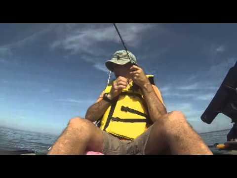 Pesca de Sargo en la isla La Tuna