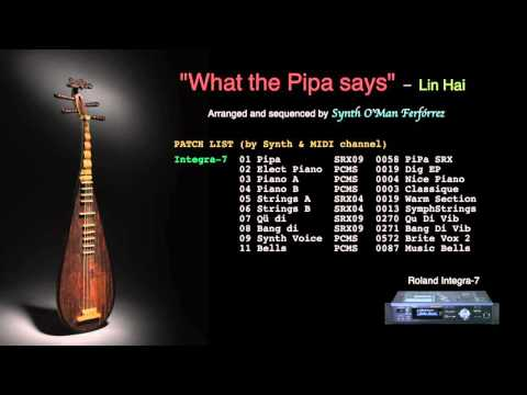 What the Pipa says / 琵琶语 - Lin Hai [Cover] [Roland Integra-7]