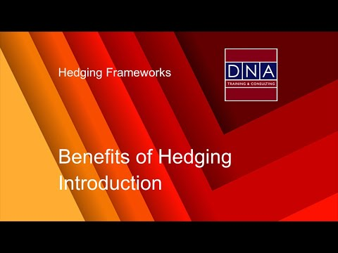 Benefits of Hedging - Introduction