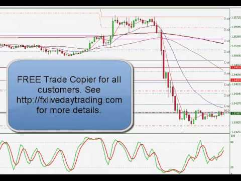fx live day trading live forex trading room results 02 07 2013