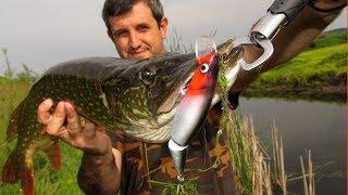 Риболов на Щуки с Големи Воблери Pike Fishing With Big Lures Hechtangeln Mit Grossen Wobblern