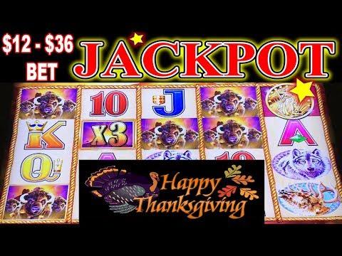 🦃 Happy Thanksgiving 🦃 ✨ JACKPOT HANDPAY ✨ BUFFALO GOLD $12 - $36 MAX BET HIGH LIMIT SLOT MACHINE
