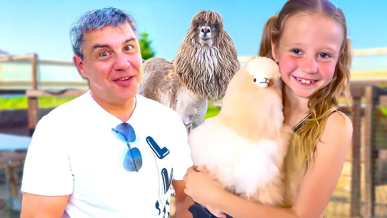 Настя и папа изучают кто такой альпака, и как заботиться о них. Полезное видео для детей