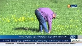 الجزائر تشهد تراجعا بنسبة 50% من واردات الحبوب بداية 2016