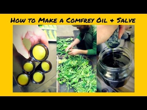 Herbal Pharmacy with Yarrow Willard | From Fresh Plant to Salve with Comfrey Leaf | Harmonic Arts