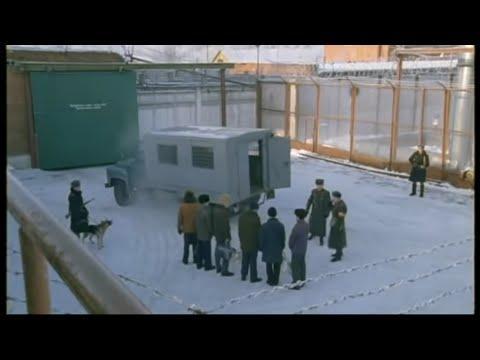 Громовы - 1 Сезон 9 Серия HD