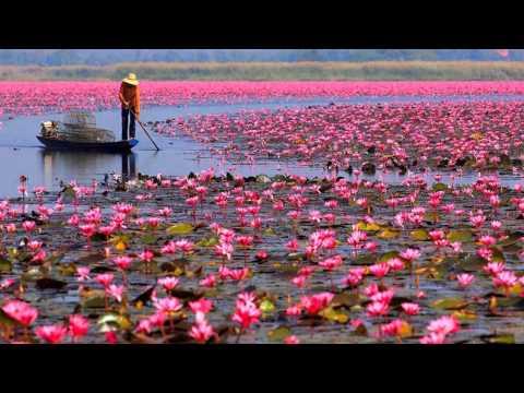 Snatam Kaur - Jap Man Sat Nam - Lotus Lake