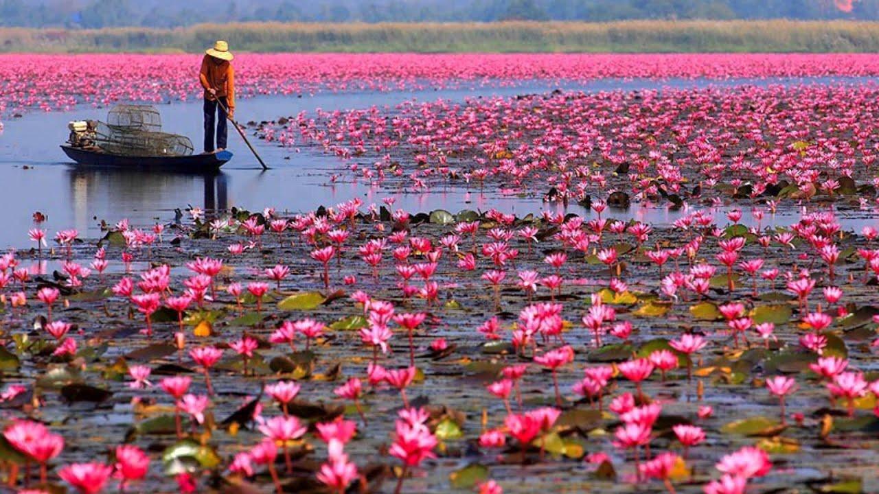 Snatam Kaur Jap Man Sat Nam Lotus Lake Chords Chordify