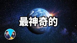 最神奇的星球,地球以及人類存在的真正原因_|_老高與小茉_Mr_&_Mrs_Gao