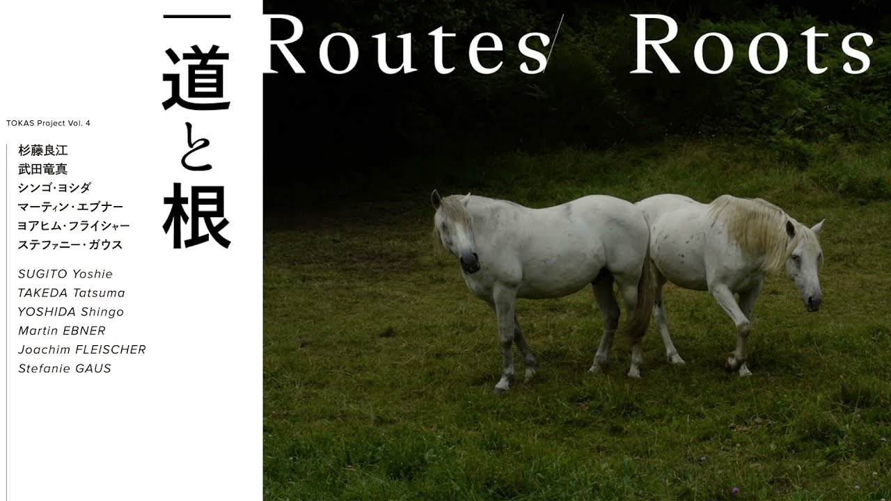 """Download TOKAS Project Vol. 4 「道と根」展示風景 Installation view at TOKAS Project Vol. 4 """"Routes/Roots"""""""